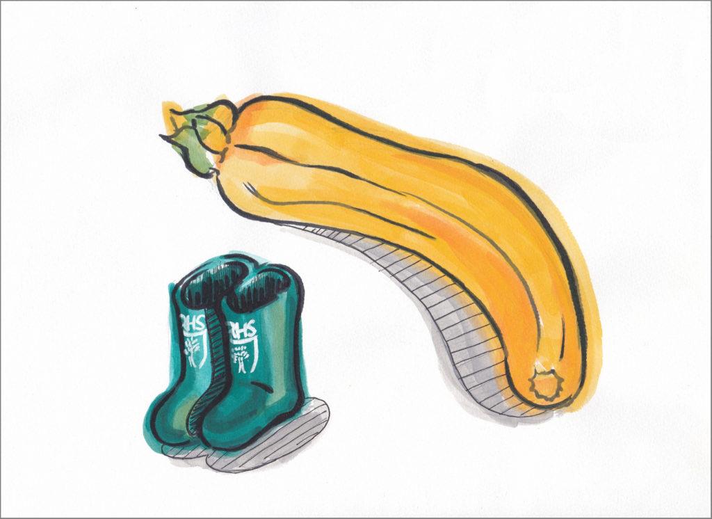 ズッキーニと緑の長靴